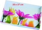 Plateau Summerflowers  - EMSA - 40 x 31 cm - Multicolore