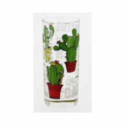 Lot de 6 Chopes hautes Cactus