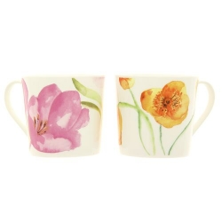 Lot de 6 mugs Border